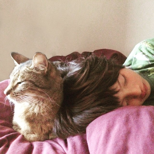 Monday morning... Ce matin.... #catlover #cats #kidstyle #latergram