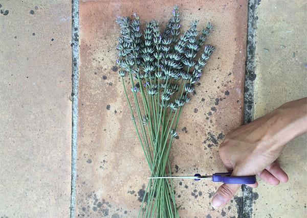 DIY lavender bouquet