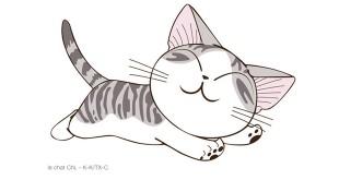 Chi the Cat