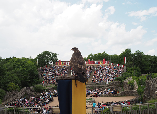 Puy du Fou Phantom Birds Show