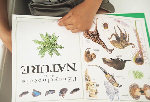 l'encyclopedie de la nature