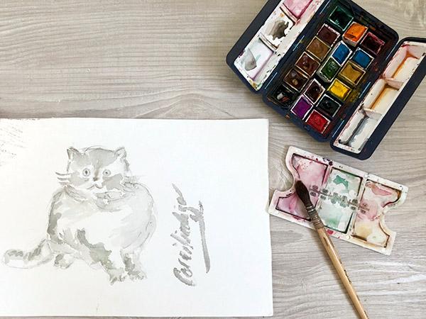 corailindigo illustration chat