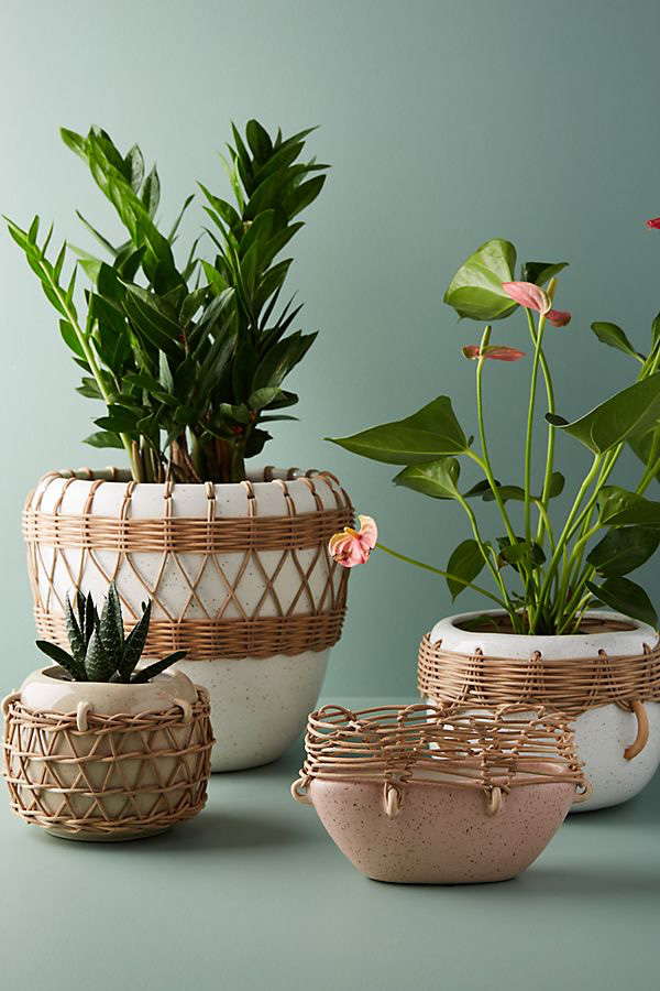 Pot en rotin Anthropologie